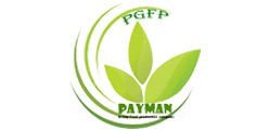 Payman Groups